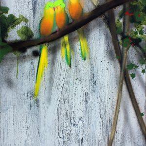 Xenz - Orange Bellied Parrots (asleep)