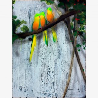 Xenz_Orange-Bellied-Parrots_sq