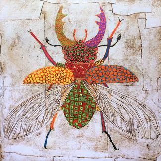 Gustavo_Ortiz_Insect