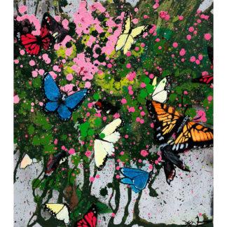 Xenz-Butterflies
